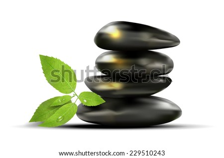 Black stones and green leafs with dew-drops on white background - vector illustration