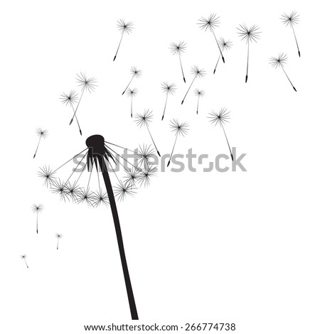 Black vector dandelion