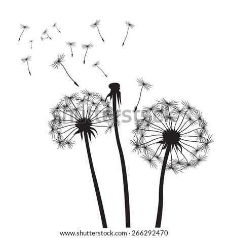 Black vector dandelions