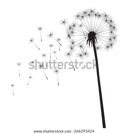 Black vector dandelions - stock vector