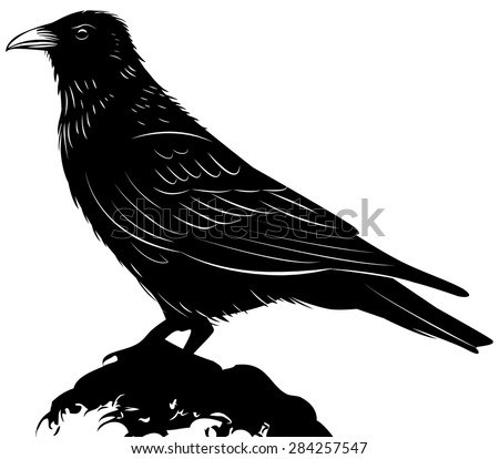 Black vector raven isolated on white background