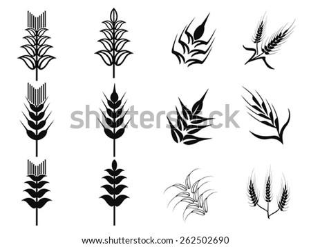 black wheat icons set - stock vector