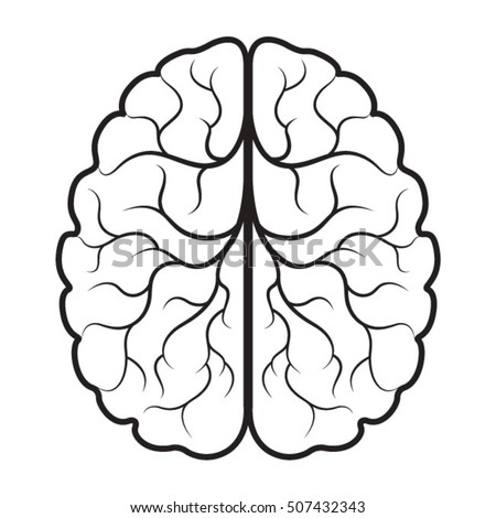 brain drawing wwwpixsharkcom images galleries with a