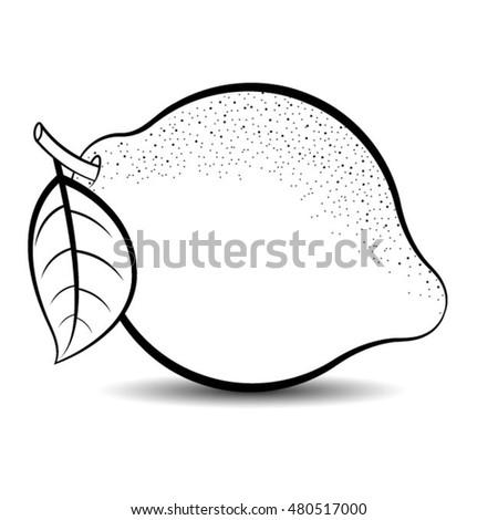 Lemons Black And White Clipart