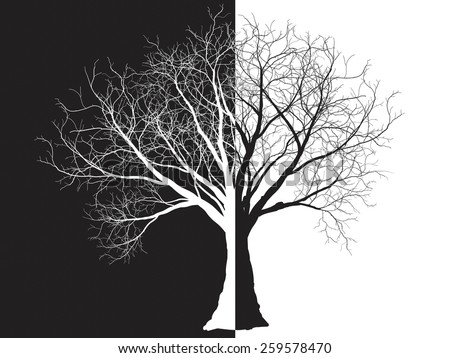 black-white tree silhouette isolated on white background, vector - stock vector