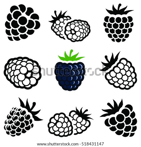 Blackberry fruit icon collection - vector outline and silhouette