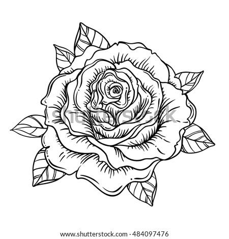 Blackwork Tattoo Flash Rose Flower Highly Stock Vector