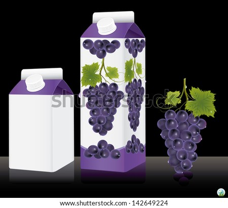 Blank milk or juice pack. Vector illustration - stock vector