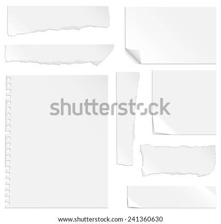 Blank Paper with Bends and Tears - Each element is grouped separately for easy editing.   - stock vector