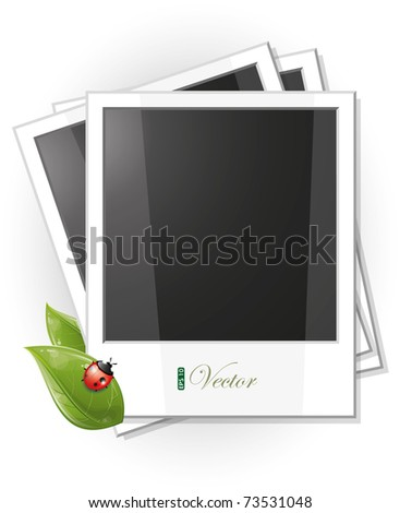 Blank photo frame illustration with green leaves and ladybug, eps-10 - stock vector