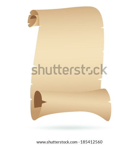 Blank Scroll Vector - stock vector
