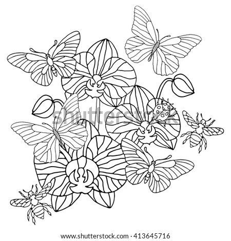 moth orchid coloring pages - photo#5