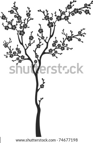 blossom cherry tree isolated on White background. Vector illustration - stock vector