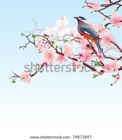 blossoming cherry tree with beautiful bird vector, high detailed image - stock vector