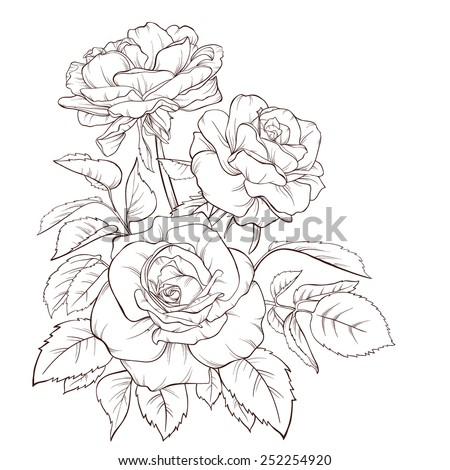 Blossoming roses with spring flowers on white. Vector illustration. Perfect for background greeting cards and invitations of the wedding, birthday, Valentine's Day, Mother's Day.