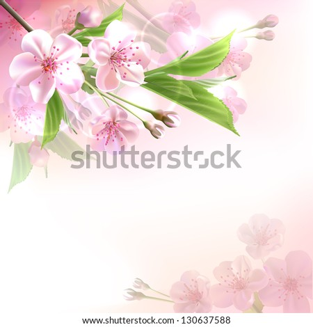 Blossoming tree branch with pink flowers  on bokeh background. Vector illustration - stock vector