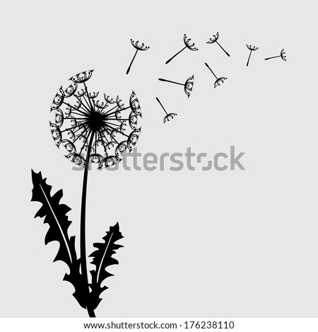 Blow dandelion vector floral background concept/ Flower - stock vector