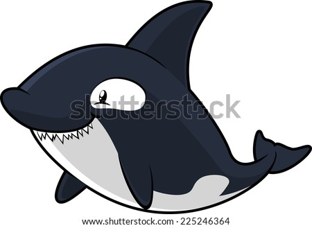 blue and grey Killer Whale showing dangerous teeth vector illustration.  - stock vector