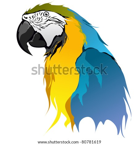 Blue and Yellow Macaw - stock vector