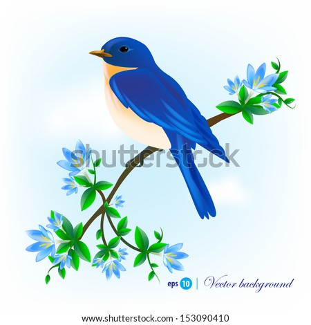 Blue bird sitting on a branch with flowers  - stock vector