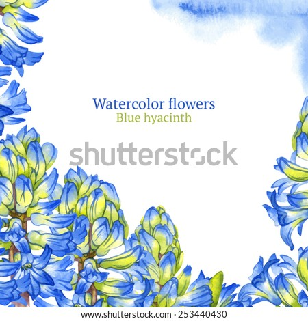Blue hyacinth flowers on watercolor background - stock vector