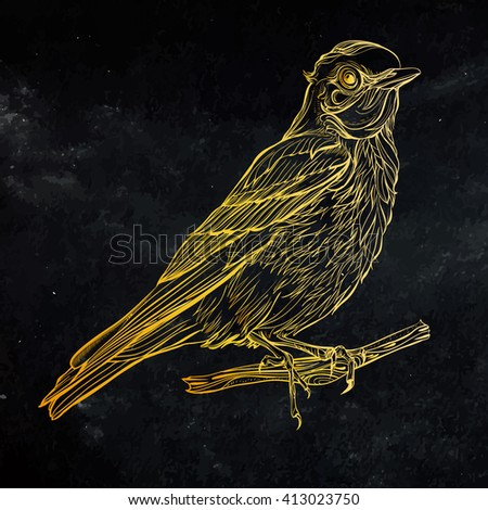 Blue Sialia. Vector illustration isolated on black background. Detailed gold drawing of a bird - stock vector