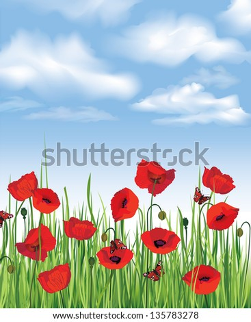 Blue sky with clouds and flower poppy field. Vector summer background.