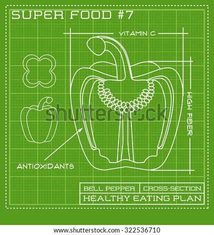 Blueprint diagram stock images royalty free images vectors blueprint diagram line drawing of green pepper cross section malvernweather Choice Image