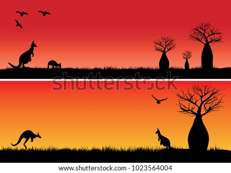 Boab trees and two kangaroos in the sunset outback Australia
