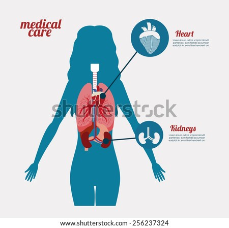 body,healthy design over, white background, vector illustration. - stock vector