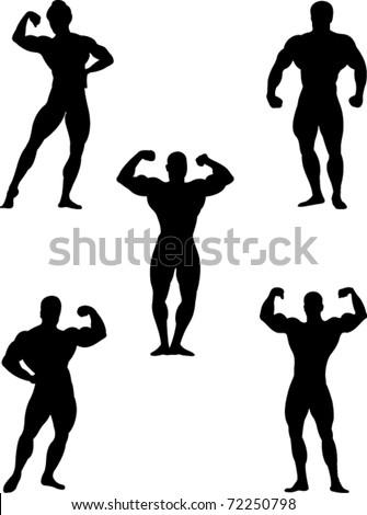 bodybuilders collection vector - stock vector