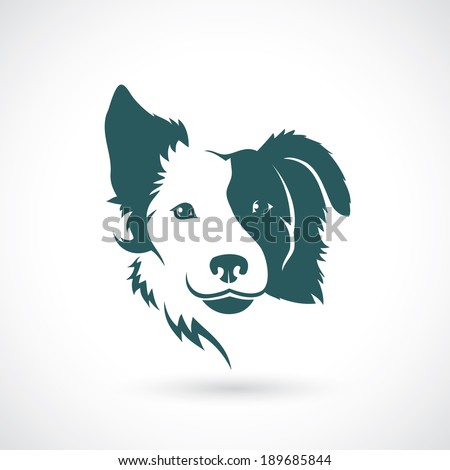 Border Collie dog - vector illustration - stock vector