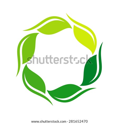 botany leaf logo nature template icon vector