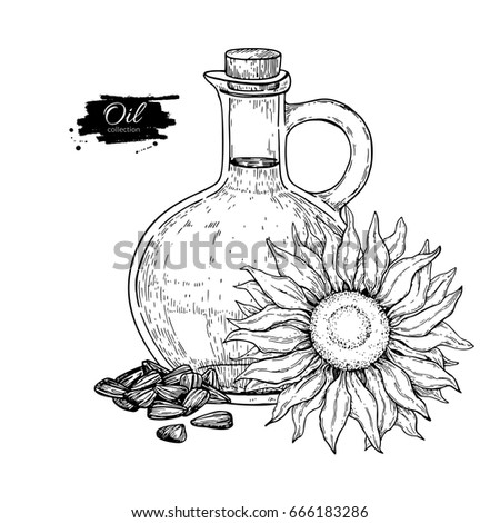 Bottle Sunflower Oil Flower Heap Seed Stock Vector 666183286 ...