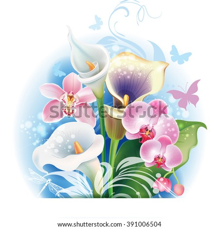 Bouquet of Orchid and Calla flowers - stock vector