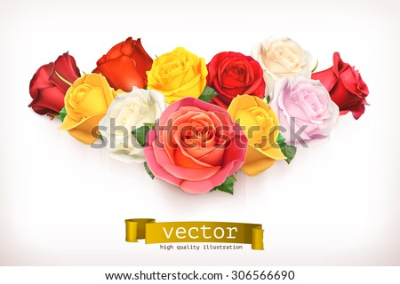 Bouquet of roses, vector illustration isolated on white - stock vector