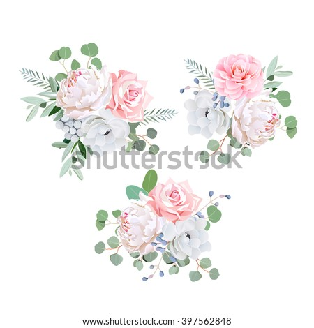 Bouquets of rose, peony, anemone, camellia, brunia flowers and eucalyptus leaves. Vector design elements.  - stock vector