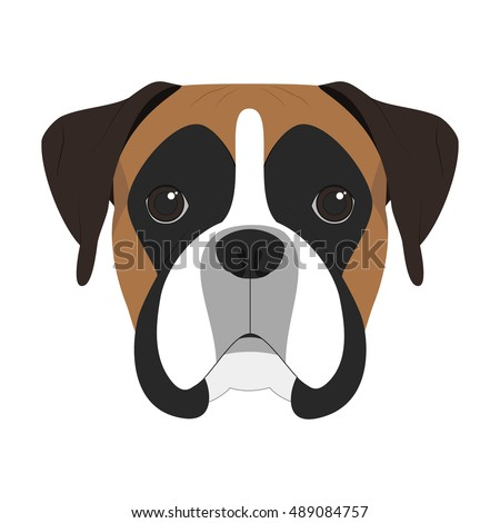 boxer dog stock images, royalty-free images & vectors | shutterstock