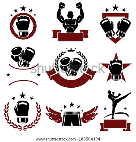 Boxing labels and icons set. Vector  - stock vector