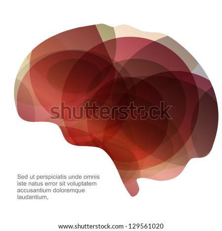 brain - stock vector