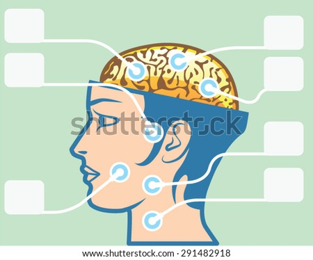 Brain and Head Functions Diagram - stock vector