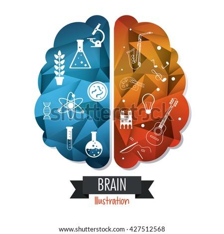 Brain design. Mind concept. White background , editable vector - stock vector