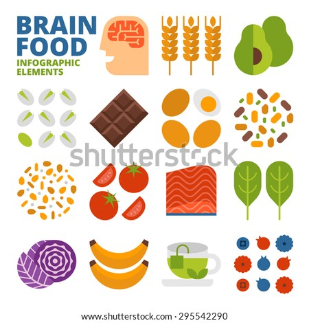 Brain Food Infographic Elements - stock vector