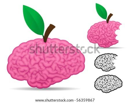 Brain fruit food collection - vector - stock vector