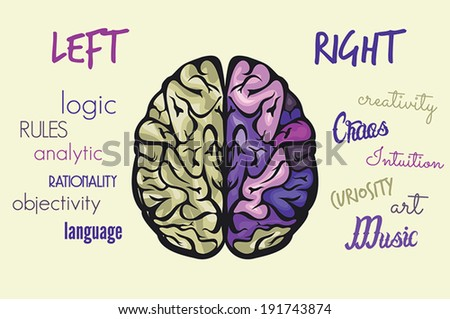 Brain function - stock vector
