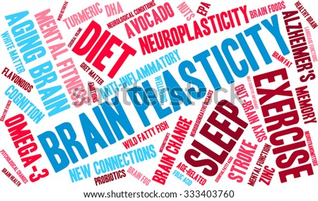 Brain Plasticity word cloud on a white background.