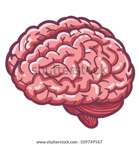 brain cartoon stock images royaltyfree images amp vectors