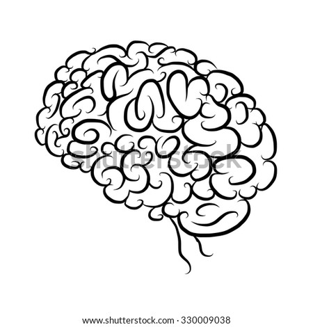 Brain, sketch for your design. Vector illustration - stock vector