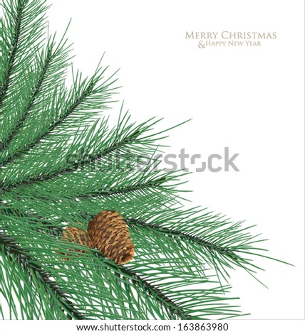 Branch fir with cones