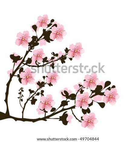 Branch of cherry flowers on white background - stock vector